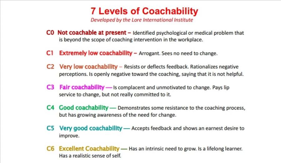 7 уровней обучаемости участников тренинга и коучинга