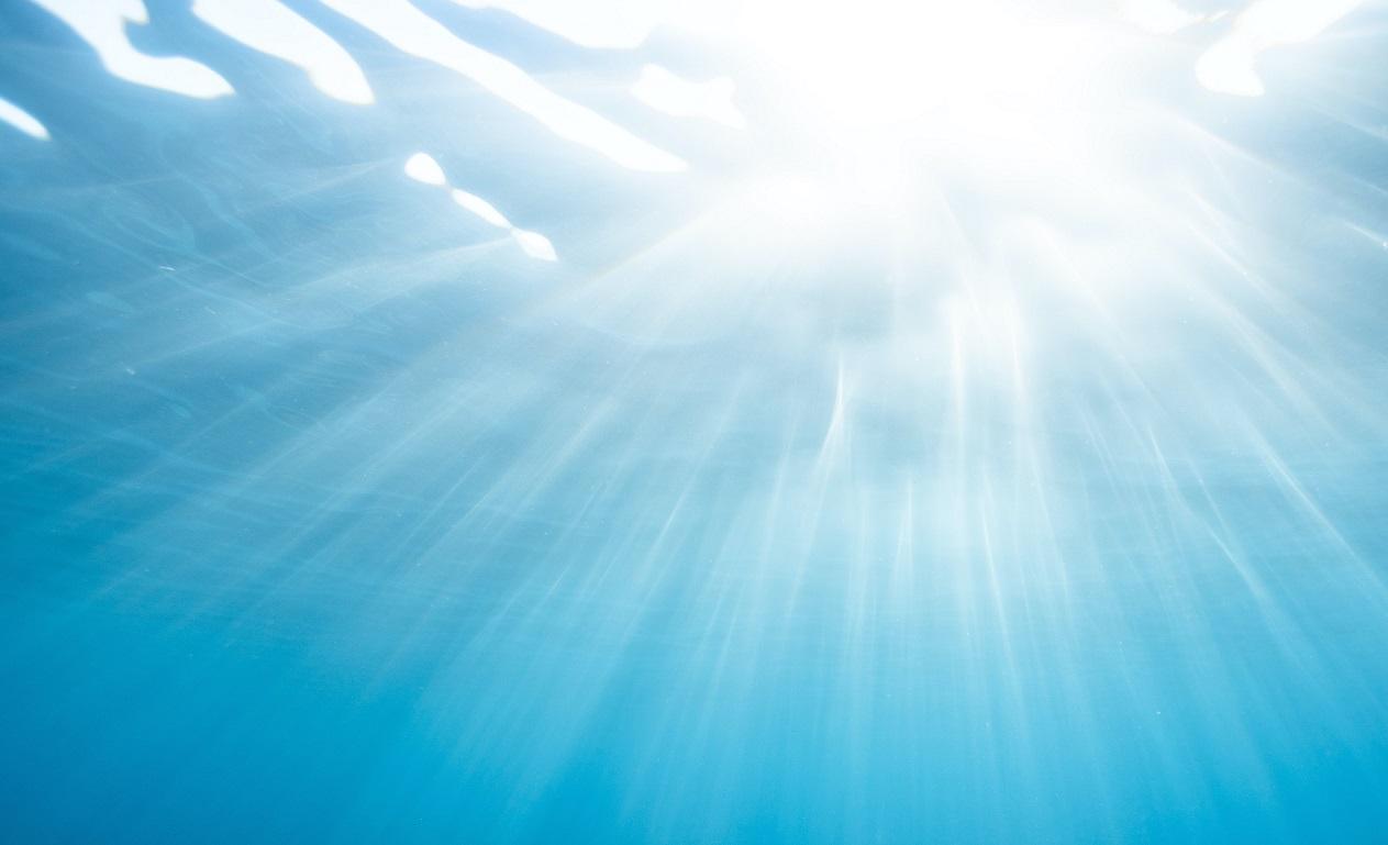 Принятие решений, VUCA и устричные рифы